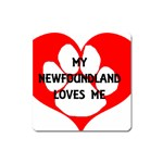 My Newfie Loves Me Square Magnet