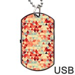 Modern Hipster Triangle Pattern Red Blue Beige Dog Tag USB Flash (Two Sides)  Front