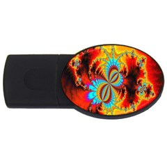 Crazy Mandelbrot Fractal Red Yellow Turquoise Usb Flash Drive Oval (4 Gb)  by EDDArt