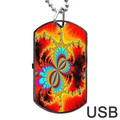 Crazy Mandelbrot Fractal Red Yellow Turquoise Dog Tag Usb Flash (one Side) by EDDArt