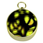 Yellow light Gold Compasses