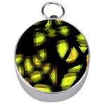 Yellow light Silver Compasses