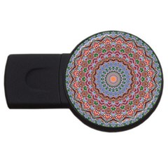 Abstract Painting Mandala Salmon Blue Green Usb Flash Drive Round (2 Gb)  by EDDArt