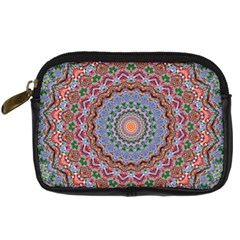 Abstract Painting Mandala Salmon Blue Green Digital Camera Cases by EDDArt