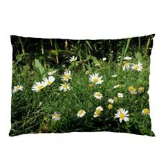 White Daisy Flowers Pillow Case by picsaspassion