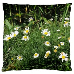 White Daisy Flowers Large Cushion Case (two Sides) by picsaspassion