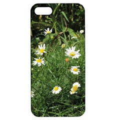 White Daisy Flowers Apple Iphone 5 Hardshell Case With Stand by picsaspassion