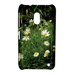 White Daisy flowers Nokia Lumia 620 by picsaspassion