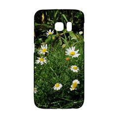 White Daisy Flowers Galaxy S6 Edge by picsaspassion