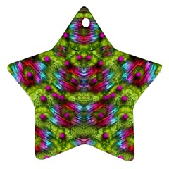 Freedom In Colors And Floral Star Ornament (two Sides)  by pepitasart