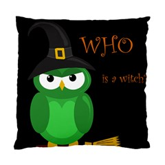Who Is A Witch?   Green Standard Cushion Case (two Sides) by Valentinaart