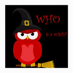 Who Is A Witch?   Red Medium Glasses Cloth (2 Side) by Valentinaart
