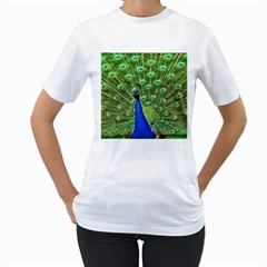 Bird Peacock Women s T Shirt (white) (two Sided)