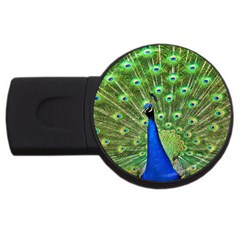 Bird Peacock Usb Flash Drive Round (2 Gb)