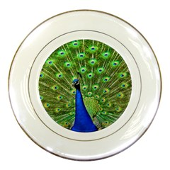 Bird Peacock Porcelain Plates