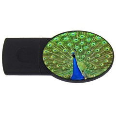 Bird Peacock Usb Flash Drive Oval (4 Gb)