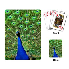 Bird Peacock Playing Card