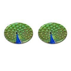 Bird Peacock Cufflinks (oval)