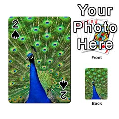 Bird Peacock Playing Cards 54 Designs