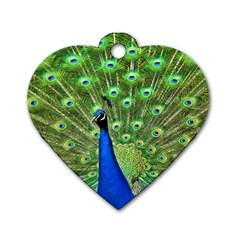 Bird Peacock Dog Tag Heart (one Side)