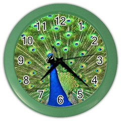 Bird Peacock Color Wall Clocks