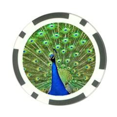 Bird Peacock Poker Chip Card Guards