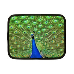 Bird Peacock Netbook Case (small)