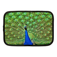 Bird Peacock Netbook Case (medium)