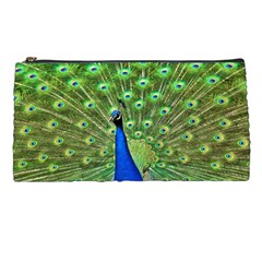 Bird Peacock Pencil Cases