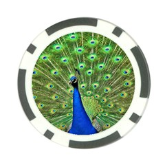 Bird Peacock Poker Chip Card Guards (10 Pack)