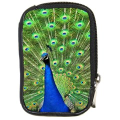 Bird Peacock Compact Camera Cases by AnjaniArt