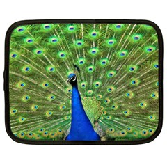 Bird Peacock Netbook Case (xxl)
