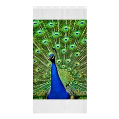 Bird Peacock Shower Curtain 36  X 72  (stall)