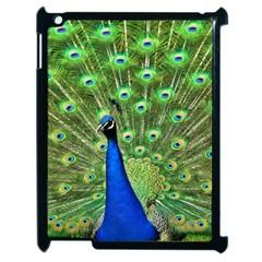 Bird Peacock Apple Ipad 2 Case (black)