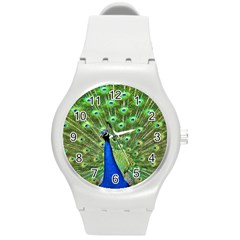 Bird Peacock Round Plastic Sport Watch (m)
