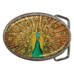 Bird Peacock Feathers Belt Buckles