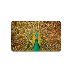 Bird Peacock Feathers Magnet (Name Card) by AnjaniArt