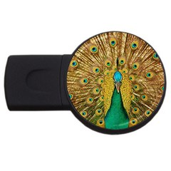 Bird Peacock Feathers Usb Flash Drive Round (2 Gb)