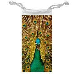 Bird Peacock Feathers Jewelry Bags
