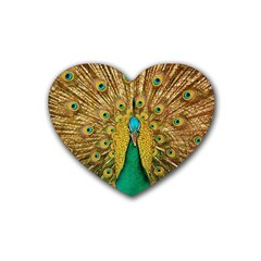 Bird Peacock Feathers Heart Coaster (4 Pack)