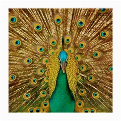 Bird Peacock Feathers Medium Glasses Cloth (2 Side)