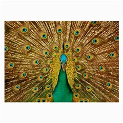 Bird Peacock Feathers Large Glasses Cloth (2 Side)