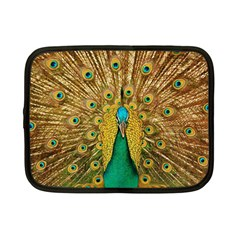 Bird Peacock Feathers Netbook Case (small)