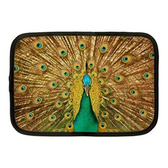 Bird Peacock Feathers Netbook Case (medium)