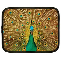 Bird Peacock Feathers Netbook Case (large)