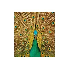 Bird Peacock Feathers Shower Curtain 48  X 72  (small)
