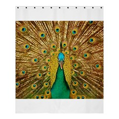 Bird Peacock Feathers Shower Curtain 60  X 72  (medium)  by AnjaniArt