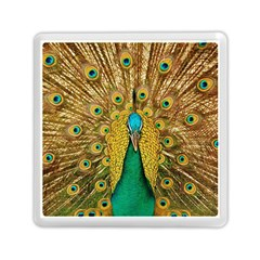 Bird Peacock Feathers Memory Card Reader (square)