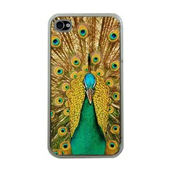 Bird Peacock Feathers Apple Iphone 4 Case (clear)