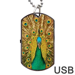 Bird Peacock Feathers Dog Tag Usb Flash (two Sides)
